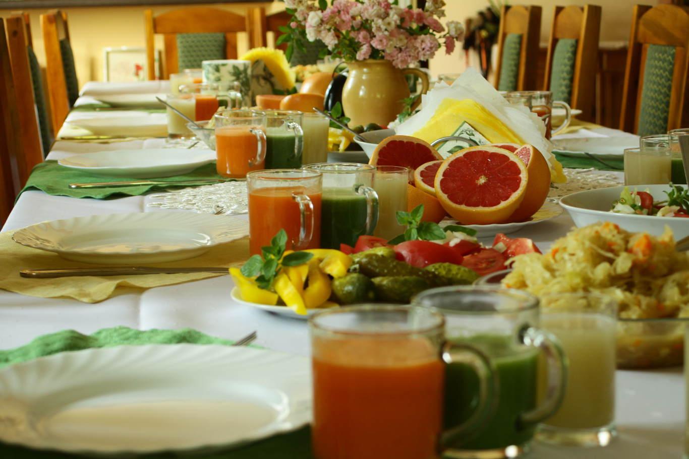 Dieta Sok Z Brzozy Dieta Dr Dabrowskiej Agroturystyka Pod Grusza